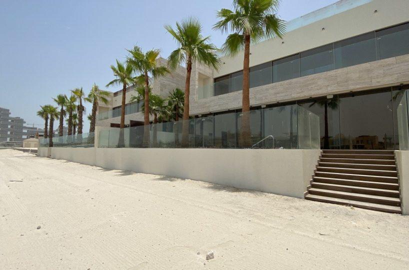 Modern Brand New Palm Villa
